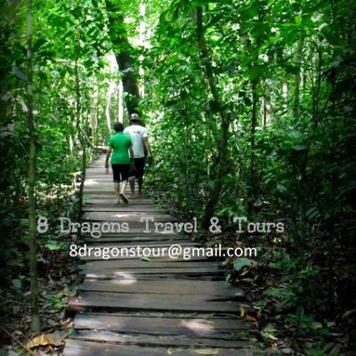 8 Dragons Travel and Tours, Palawan