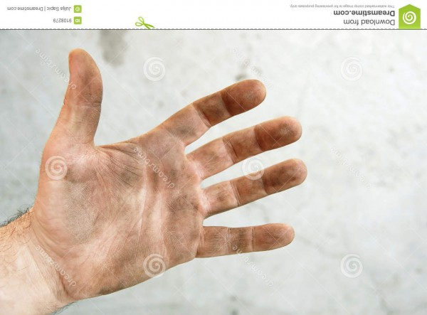 http://www.dreamstime.com/royalty-free-stock-images-dirty-palm-image9108279