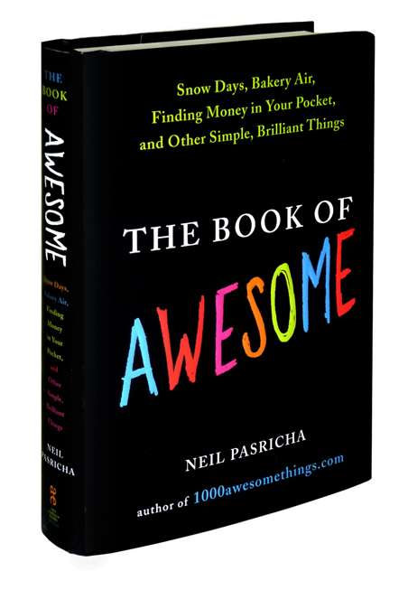bookofawesome3d (1)