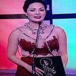 Mga Eksena sa MMFF 2013 Awards Night